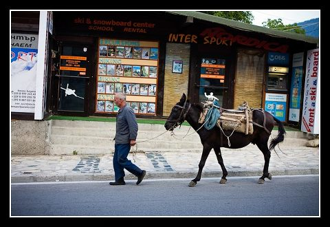 Bulgarian man with donkey in front of sports shop