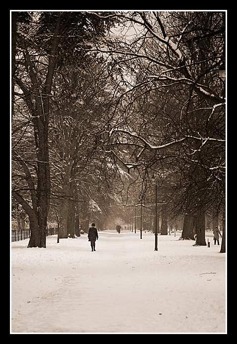 snowfav06